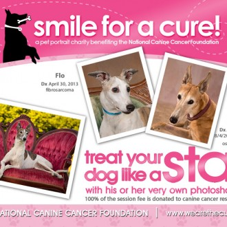 Smile for a Cure