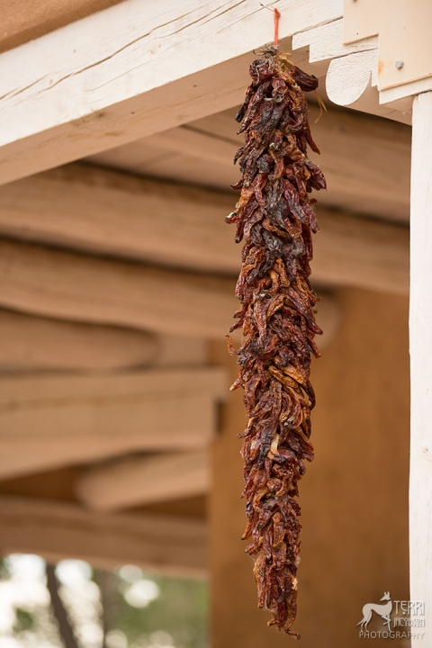 Chili peppers, a very common sight in Santa Fe