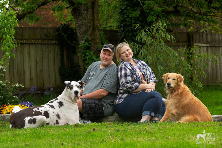 Great Dane and golden retriever with their family