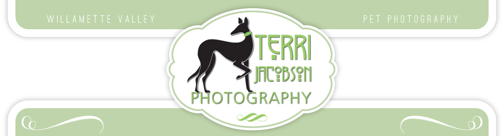 Terri Jacobson Pet Photography logo